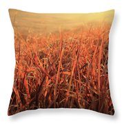 Grass Dyed In The Morning Glow Throw Pillow