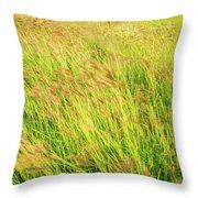 Grass Field Landscape Illuminated By Sunset Throw Pillow