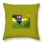 Grass Hopper Having Lunch Throw Pillow