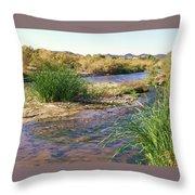 Grass Island Throw Pillow