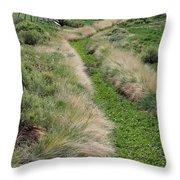 Grass Path Throw Pillow