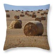 Grass Roll Throw Pillow