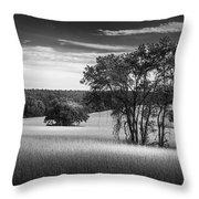 Grass Safari-bw Throw Pillow