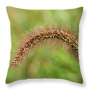 Grass Seed Throw Pillow