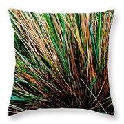 Grass Tussock Throw Pillow