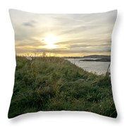 Grass Vs Stems Throw Pillow