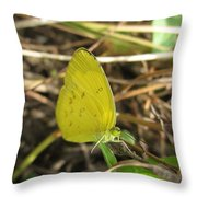 Grass Yellow 01 Throw Pillow