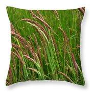 Grass3 Throw Pillow