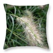 Grasses 6 Throw Pillow