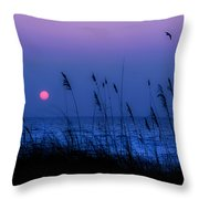 Grasses Frame The Setting Sun In Florida Throw Pillow