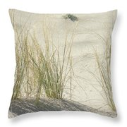Grasses On The Beach Throw Pillow