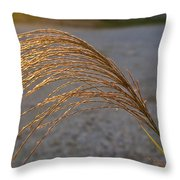Grassflowers In The Setting Sun Throw Pillow