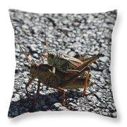 Grasshoper Love Throw Pillow