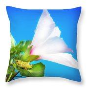Grasshopper And Blue Sky Throw Pillow