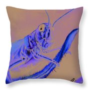 Grasshopper Throw Pillow