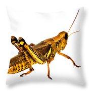 Grasshopper I Throw Pillow