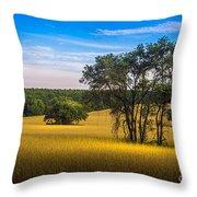 Grassland Safari Throw Pillow