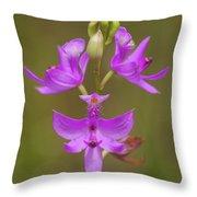 Grasspink #1 Throw Pillow