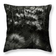 Grasstrees Throw Pillow
