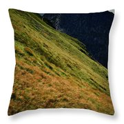 Grassy Before The Top Of The Rocky Hill Throw Pillow