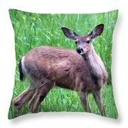 Grassy Doe Throw Pillow