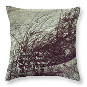 Grassy Dunes Colossians 3 Throw Pillow