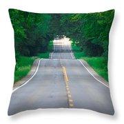 Grassy Lake Road Throw Pillow