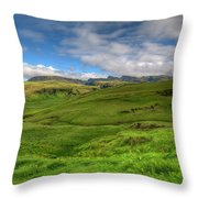 Grassy Meadow South Iceland Throw Pillow