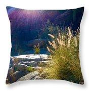 Grassy Sun Rays Throw Pillow