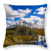 Grassy Waters 3 Throw Pillow