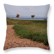 Gravel Path Throw Pillow