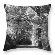 Graves Rd  Throw Pillow
