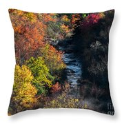 Graveyards Fields. Throw Pillow