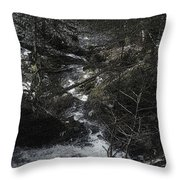 Gravity And Water Throw Pillow