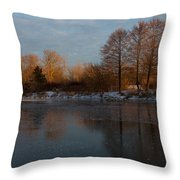 Gray And Amber - An Early Winter Morning On The Lake Shore Throw Pillow