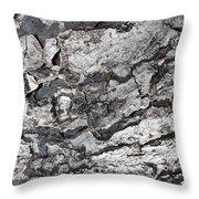 Gray Bark Throw Pillow
