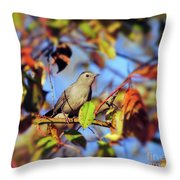 Gray Catbird Framed By Fall Throw Pillow