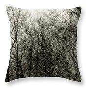Gray Dawn Throw Pillow