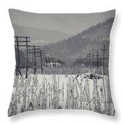 Gray Day Throw Pillow