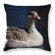 Gray Duck Throw Pillow