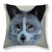 Gray Fox Head Study Throw Pillow