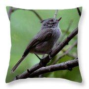 Gray Grey Bird 052814a Throw Pillow