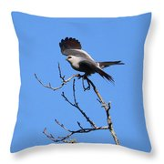 Gray Hawk Retreat Throw Pillow