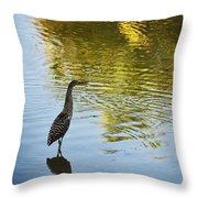 Gray Heron  Throw Pillow