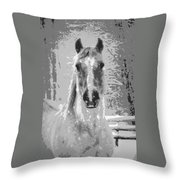 Gray Horse Throw Pillow