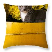 Gray Kitten In Yellow Bucket Throw Pillow