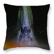 Gray Rainbow Throw Pillow