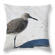 Gray Sandpiper On White Beach Throw Pillow