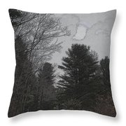 Gray Skies Over The Pines Throw Pillow