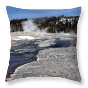 Gray Spring Throw Pillow